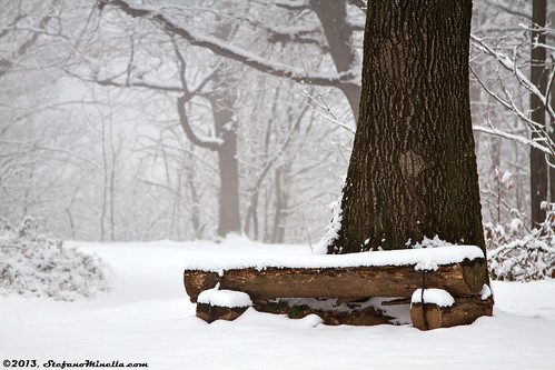 A Place To Rest (winter)