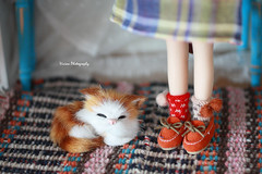 Miao~