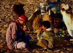 The bedouins.