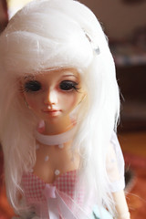 Kumiko. (Phoenix Filth) Tags: cute girl pop kawaii bjd dollfie hybrid fairyland msd gyaru unoa lusis minifee slimmsd