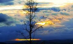 Winter in September (murtphillips) Tags: nikond80 oltusfotos mygearandme magicmomentsinyourlifelevel1 vigilantphotographersunite vpu2 vpu3 vpu4