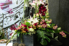 Lovely Display (Jocey K) Tags: show flowers newzealand art sign design exhibit nz arrangement floralart ellerslieinternationalflowershow