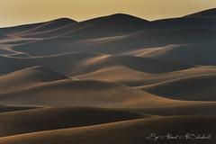 Rub Al-Khali (Empty Quarter) (digitalazia) Tags: nature landscape desert dunes curves environment sands oman sanddunes emptyquarter sultanateofoman omani    rubalkhali