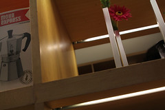 Inside MoMA (Jos Ramn de Lothlrien) Tags: red irish dog ny newyork yellow nbc rojo candle dancers erin manhattan nieve pipes iglesia jr eire parade desfile perro helicopter amarillo souvenir timessquare fox gaitas bandera microphone abc fifthavenue serendipity vela shamrock bomberos policia madisonavenue serendipity3 irlanda bh dulces nuevayork sanpatricio iloveny mmworld catedra trebol bailarinas candys estatuadelalibertad brodway producciones emirestate 5taavenida microfonos helicomptero stpatickparade