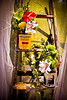 Exhibit @ Canada Blooms (A Great Capture) Tags: show old flowers toronto ontario canada home garden spring paint gardening ashley exhibit l curtains ladder cans cb ideas trade springtime duffus on gardenshow canadablooms paintcans sheers ald gardeningshow directenergycentre ash2276 ashleyduffus ashleylduffus wwwashleysphotoscom canadaslargestgardenandflowershow