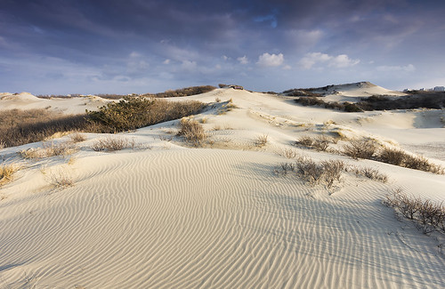 White Sands of Kijkduin