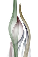 tulipa (Memotions) Tags: ontario canada abstract art floral digital computer guelph flame fractal conceptual patty ifs generated interpretive 2013 ohearn memotions kickham