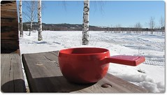 A cup of coffee in the sun (HJsfoto) Tags: ice cup nature natur eastern vrvinter springwinter almostanything bodtrskfors bodtrskn