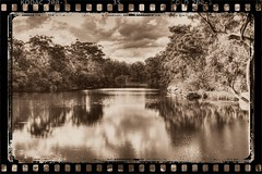 Lake Paramatta vintage film (loobyloo55) Tags: blue trees lake green film water vintage canoneos7d lakeparamatta