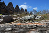 Mexiko - Tierwelt (Helmut44) Tags: nature animal stone landscape mexico tiere palomar landschaft uxmal leguan tierwelt taubenhaus mayastätte