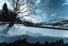 SG100950-1 (acornuser) Tags: road uk winter shadow snow tree ice silhouette stone wall nationalpark day lakedistrict cumbria hillside ambleside bleatarn jlp samsunggx10