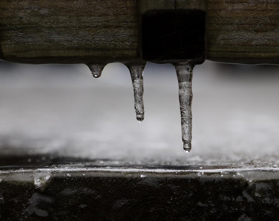 Ice storm 052