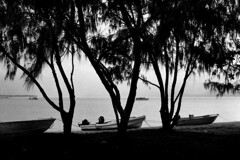 Bayo Beach, Thursday Island (electricnerve) Tags: voigtlander el sl f 40mm nikkormat f20 ultron thursdayisland polypan