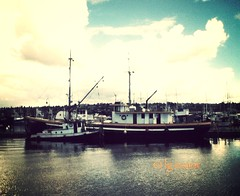 Texada Fir & Tyee No. 1 at the Terminal. (lg evans Maritime Images) Tags: seattle canada wa tugboat 100 tug fishermansterminal texadafir lgevans mammothfilter tyeeno1