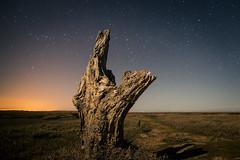 23:20:52 (@iamrobharvey) Tags: night canon stars long exposure tide low norfolk astro tokina april thornham 2013 60d 1116mm