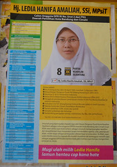 WJava_PSingle_ID0665 (colmfox) Tags: indonesia westjava 2009 legislativeelections