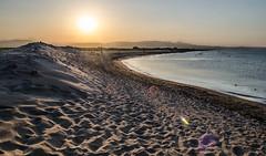 Playa del Fangar 2 (Alejandra Valencia Ocampo) Tags: delta del ebro espaa tarragona nikon d5100 nikkor 18 55 landscape paisaje naturaleza nature playa mar mediterraneo sunset puesta de sol arena dunas desierto