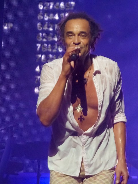 Yannick Noah - Palais des Sports, Paris (2014)