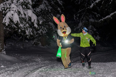 16-Ut4M-BenoitAudige-0595.jpg (Ut4M) Tags: france bnvoles ut4m2016reco isre ut4m lapin belledonne chamrousse stylephoto nuit animaux alpes mascot
