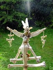 stabreg (Einheitsbrei) Tags: einheitstochter witch hexe knochen bones skull schdel death dead deadthings deadanimals fundstcke