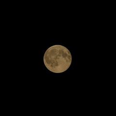 Moon 3/3 (Seeing with digital cameras) (Sir Cam) Tags: cambridge cambridgeuniversity universityofcambridge fullmoon camdiary sircam