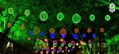 Ganesh Chaturthi Celebrations @ 2016 (The.Creativity.Engine) Tags: ganesh ganesha ganpati vignaharta bappa morya idol faith hinduism religion statue art celebration festival mumbai matunga sion india maharashtra
