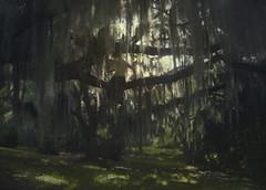 spanish jungle (fiddleoak) Tags: moss jungle tree climb green warm sunset sun zev hoover