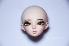 FL Minifee Luka (AnnaZu) Tags: annaku annazu fairyland minifee doll balljointeddoll bjd abjd luka dollfairyland bjdmakeup faceup makeup repaint faceupartist vesnushkahandmade