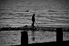 The Detectorist (Steve.T.) Tags: blackandwhite bnw mono metaldetecting metaldetector treasurehunt frinton frintononsea beach sea seaside nikon d7200 livinginhope searching waves seashore mudlark essex alone solitude lonely