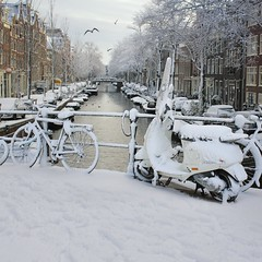 Fresh snow fallen in the center of Amsterdam (Bn) Tags: world street trees windows winter light sunset people sun seagulls house snow cold holland heritage church water netherlands dutch amsterdam weather bike corner walking frank anne boat canal cozy cool colorful shadows snowy walk seagull sneeuw bikes atmosphere scooter file canals unesco covered brug snowfall sled mokum rembrandt meeuw meeuwen gezellig cafs jordaan sleding bycicles slee bycicle nowandthen pakhuis westerkerk wester bloemgracht lijnbaansgracht celcius grachtengordel rondvaartboot 1000km 1c lekkersluis