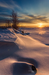 Winter's Splendor #6 - Sculpted (Thousand Word Images by Dustin Abbott) Tags: winter sky ontario canada cold tree ice beautiful clouds sunrise river pembroke dawn rocks solitude frost bare atmosphere handheld fullframe ottawariver petawawa deepcolor canonef1740mmf4l skimminglight deepdepthoffield canoneos6d ononeperfectphotosuite thousandwordimages adobelightroom4 dustinabbott dustinabbottnet