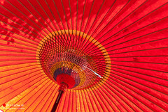 From Underneath (Masahiko Futami) Tags: red history yellow japan umbrella photo nikon asia shoot photographer kamakura photograph journey 日本 tradition umbrellas craftsmanship 傘 鎌倉 歴史 神奈川県 伝統 黄色 赤 japaneseumbrella 和傘 職人芸
