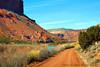 Lonely Road (Aspenbreeze) Tags: nature rural colorado country redrocks dirtroad countryroad oldroad ruralroad gatewaycolorado deloresriver aspenbreeze topphotospots tpslandscape tpslandscapes gpsetest bevzuerlein