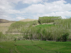 Fields - Afghanistan (UNEP Disasters & Conflicts) Tags: afghanistan unepmission development disaster deforestation drought conflict peace poverty pcdmb peacebuilding climatechange unep unenvironment