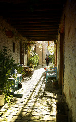 Walking at Lefkara (polis poliviou) Tags: morning travel light woman plants dog pet house mountains flower green art architecture walking flora holidays mediterranean village lace walk district pots cipro vacations larnaca polis slopes zypern leonardodavinci kypros chypre lacework lefkara chipre kypr cypr cypern supershot  kipras ciprus lefkaritika exemplaryshots lovecyprus republicofcyprus flickrsbestgroup   superaward  poliviou trodos polispoliviou    cyprusinyourheart     sayprus chipir wwwpolispolivioucom yearroundisland cyprustheallyearroundisland polispoliviou2013