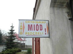 SAM_3424 (szczym) Tags: trip winter bike poland polska zima rower bzzz pszczoy wyprawa mid robaki jedziemynamiodzie wyprawawobroniepszcz rolnikuszanujpszczoy
