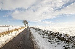 Scottish  Snow Scene  - Winter Road  -  Snow Covered Dyke - Tayside (Magdalen Green Photography) Tags: winterroad scottishwinter iaingordon snowcovereddyke magdalengreenphotography taysidesnowscene