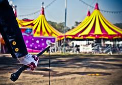 The Dark Side Of Circus (Gabrielle Vzquez) Tags: mxico canon blood circo circus whip violence glove guante conceptual cirque sangre violencia maltrato animalcruelty animalabuse 2011 socialcriticism canon500d crueldad ltigo maltratoanimal crueldadanimal canont1i gabeev