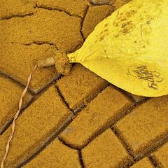 squareorange #2lifesablast (JimWicks) Tags: orange waste rubish cracks dry earth soil sand bottle blast beach seaham chemical balloon yellow mcdonalds happy meal junk