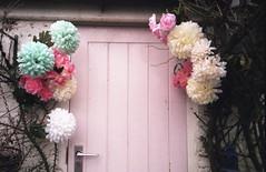 (teacup_dreams) Tags: pink flowers film 35mm