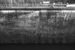 Empty Lock Wall (pmvarsa) Tags: blackandwhite bw ontario canada texture film wall analog 35mm nikon outdoor lock transport wideangle niagara damage 135 shipping coolscan ilford scrape nikkormat ilforddelta100 wellandcanal lock3 ftn niagararegion nikkormatftn nikonsupercoolscan9000ed cans2s