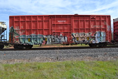(huntingtherare) Tags: train graffiti destn freight southbound aera rollingstock plantrees afroe