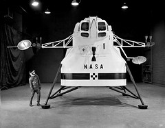 1962 ... early Lunar lander design! (x-ray delta one) Tags: sf mars 1955 illustration vintage mercury space astronaut nasa 1950s skylab scifi lifemagazine rocket sciencefiction 1960s outerspace tomorrowland apollo gemini mir cosmonaut vostok thefuture aerospace cccp saturnv soyuz worldoftomorrow spacerace spaceexploration magazineillustration maninspace robertmccall