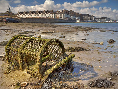 Something old, something new... (explored) (Alan10eden) Tags: ocean ireland sea dublin seascape seaweed beach canon coast seaside view harbour sigma pot lobster coastline 1770 malahide 60d