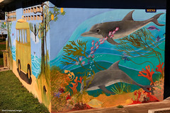 Dolphin Mural, Old Bar,Manning Valley , NSW Australia (Black Diamond Images) Tags: mural australia toilet nsw oldbar midnorthcoast manningvalley oldbarbeach dolphinmural