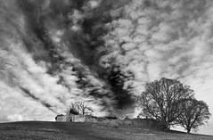 Hulne Abbey (Ray Byrne) Tags: blackandwhite abbey monotone alnwick northumberland priory friary carmelites raybyrne hulnepark hulneabbey byrneoutcouk webnorthcouk