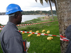 Research - Cte d'Ivoire (UNEP Disasters & Conflicts) Tags: water pollution environment development ctedivoire unep sampling naturalresources environmentalassessment unitednationsenvironmentprogramme unepmission uneppostconflictanddisastersmangementbranch