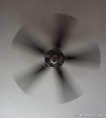 Take Off (scottnj) Tags: 229366 fan ceilingfan blades spin spinning cool breeze wind scottnj redditphotoproject reddit365 365project cy365