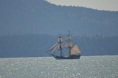 Pirate Ship (Neal D) Tags: squalicumharbour ship boat pirateship bellingham washington tallship ladywashington