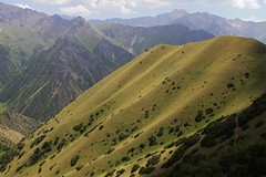 A hillside I liked